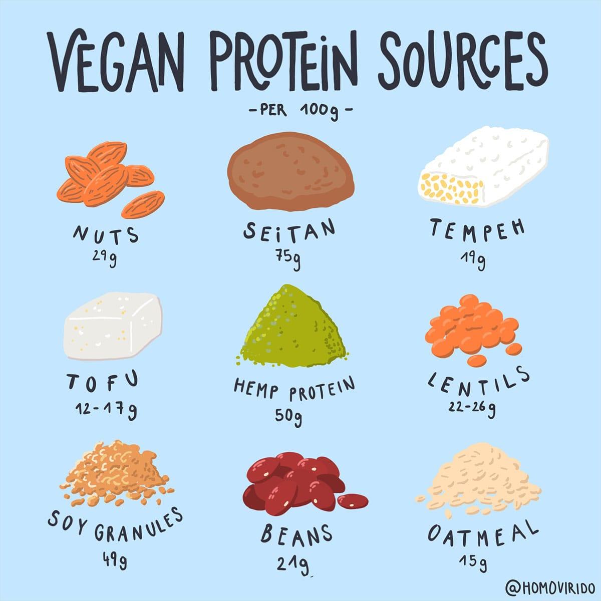 PetraHollaender_Vegan_Protein_Sources
